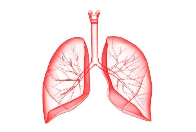 Remedios Caseros Para Los Pulmones - Fortalece, Limpia y