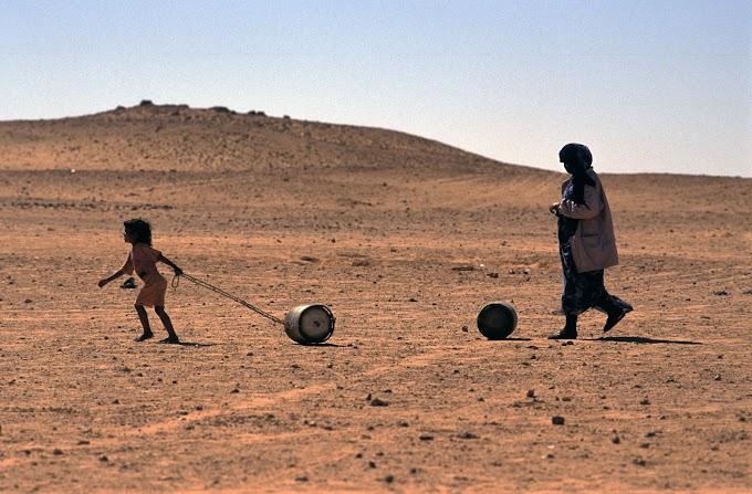 Panorama actual: Mientras el pueblo saharaui malvive reprimido y refugiado, la UE expolia sus recursos naturales.