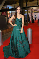 Raashi Khanna in Dark Green Sleeveless Strapless Deep neck Gown at 64th Jio Filmfare Awards South ~  Exclusive 165.JPG