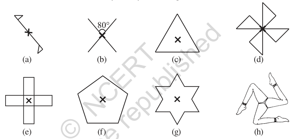 Question 2 Exercise 14.2 Class 7 Maths