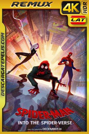 Spider-Man: Un nuevo universo (2018) 4k BDRemux HDR Latino – Ingles