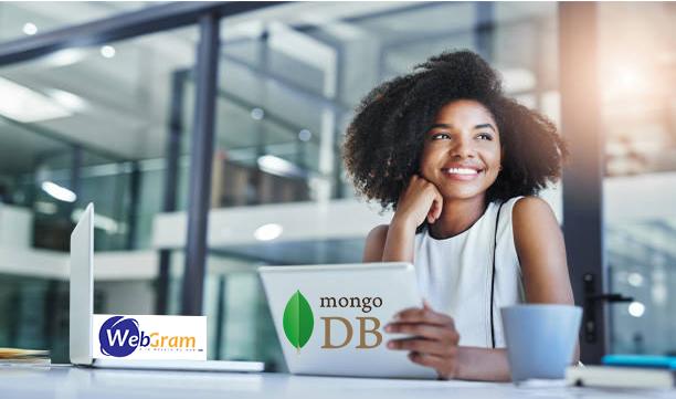 WEBGRAM, agence informatique basée à Dakar-Sénégal, leader en Afrique, ingénierie logicielle, développement de logiciels, systèmes informatiques, systèmes d'informations, développement d'applications web et mobile, MongoDB