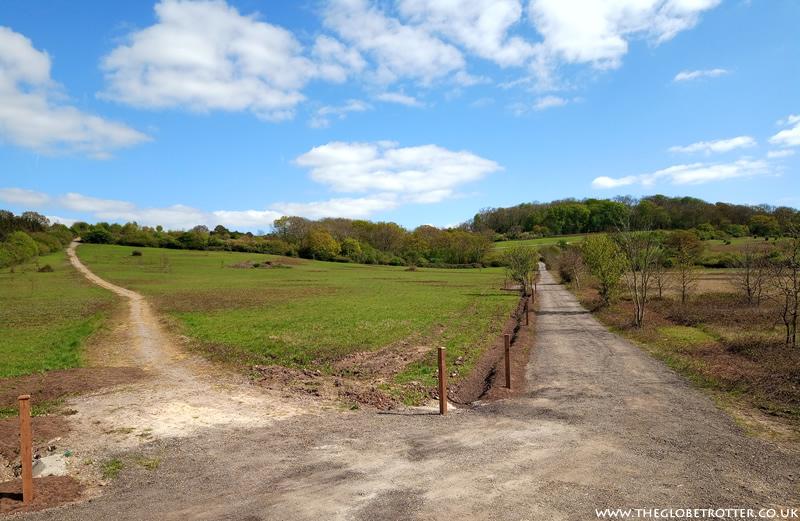 Two paths near Daws Hill