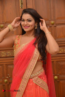 Actress Ashwini Latest Pictures in Red Half Saree  0012