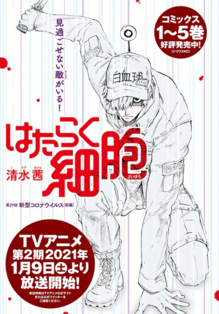 Cells at Work! (Hataraku Saibou) manga - Akane Shimizu