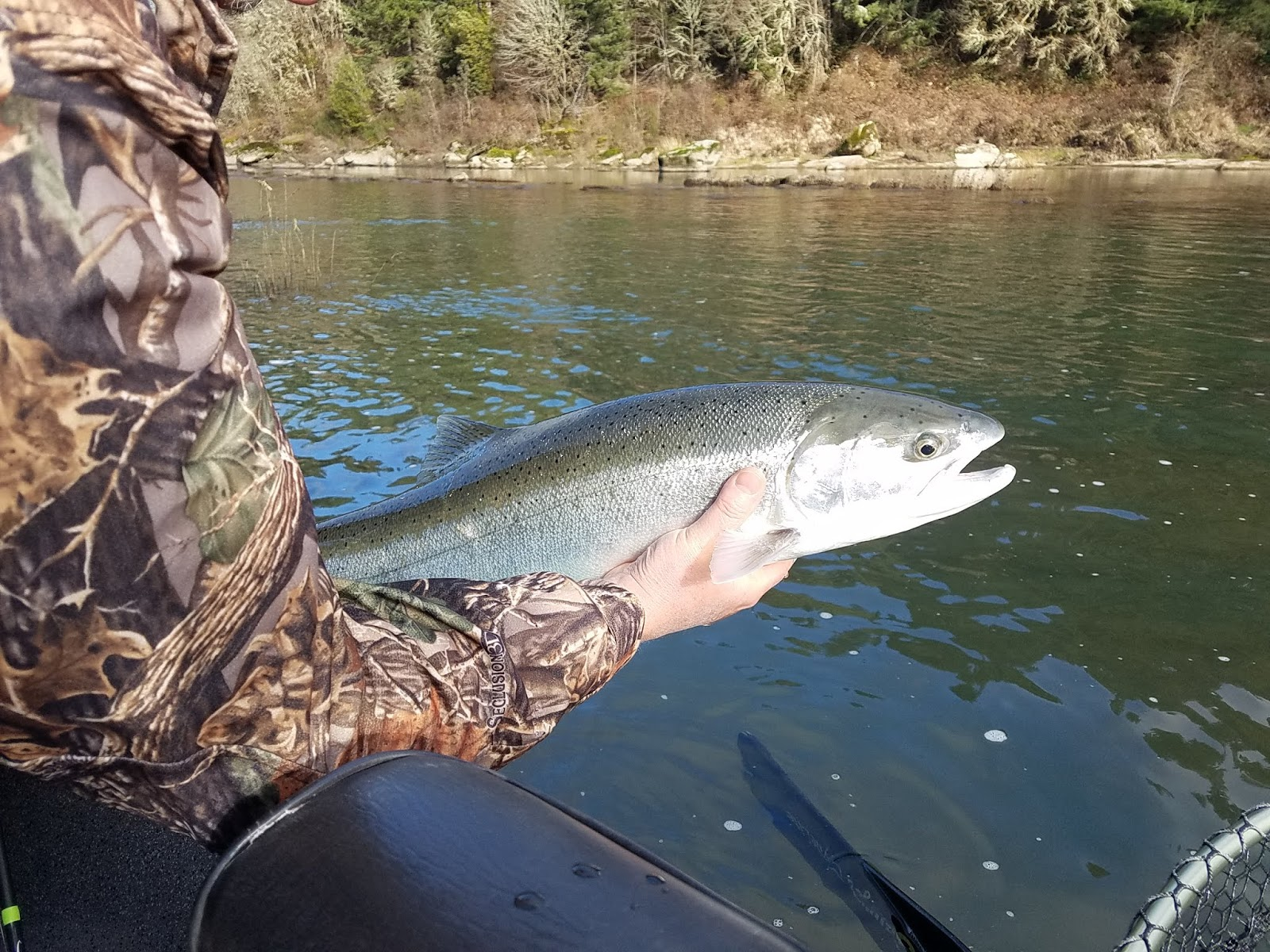 Oregon Fishing Trips - Rogue River Fishing - Chetco - Elk ...