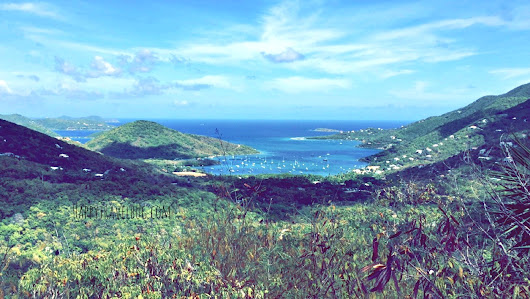 My adventure in St John, US Virgin Islands