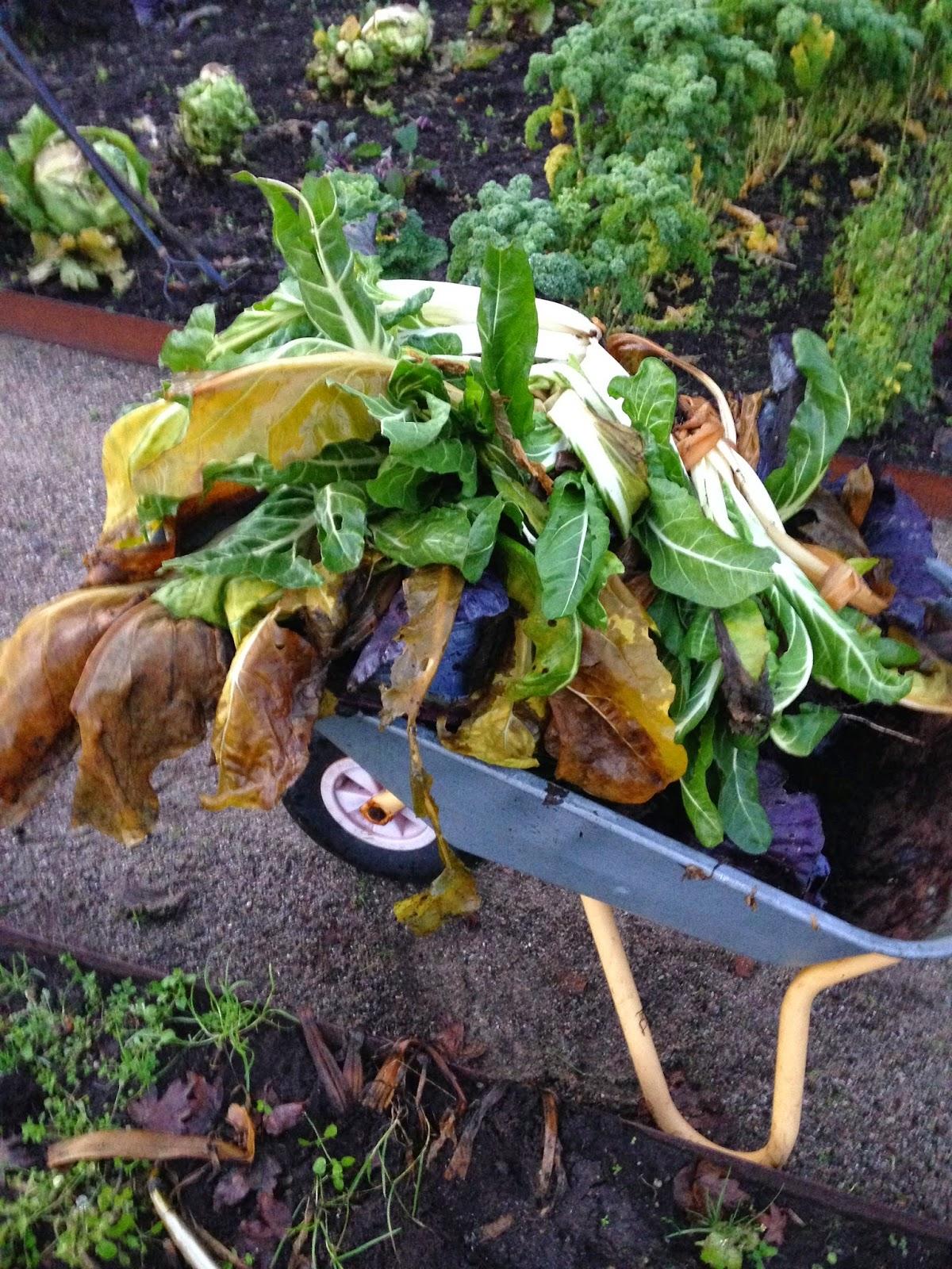 Jannes have : kompost på fem minutter