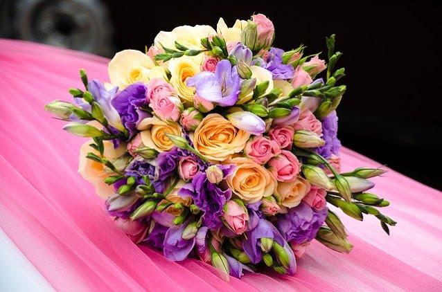 gambar bunga mawar yang sangat indah