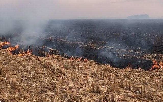 Tot mai multe cazuri de aprindere a vegetației uscate în raionul Leova