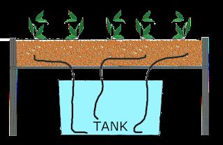 model-wick-system-hidroponik