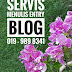 Servis Menulis Entry Blog