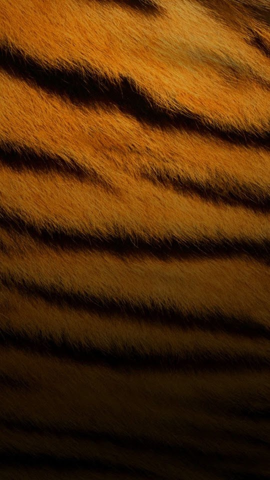 Tiger Skin Pattern  Galaxy Note HD Wallpaper