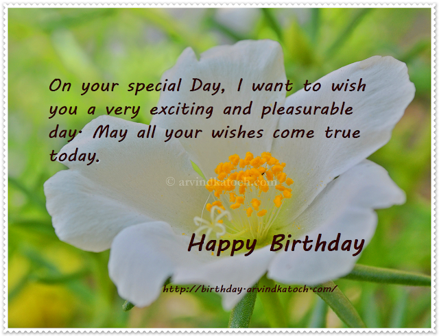 Special Day, Happy Birthday, Birthday Card, exciting, pleasurable