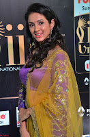 Priya Sri in Purple Choli Stunning Beauty at IIFA Utsavam Awards 2017  Day 2 at  09.JPG