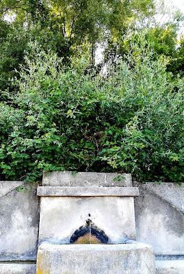 la patata di Muro lucano e i tesori del monte Paratiello