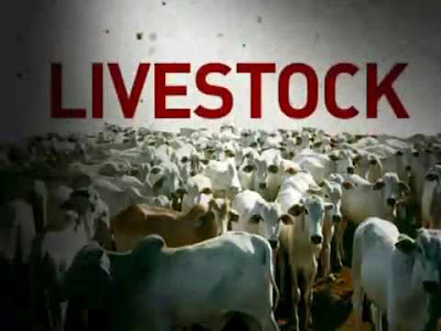 Hunter International Livestock