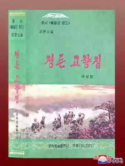 DPRK Novel 'Our Dear Native Home'