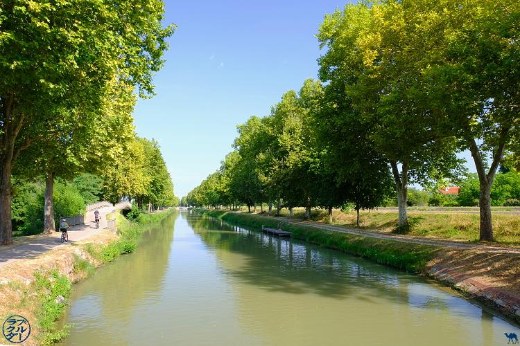 Le Chameau Bleu - Blog Voyage Tarn et Garonne en Vélo - Canal des Deux Mers