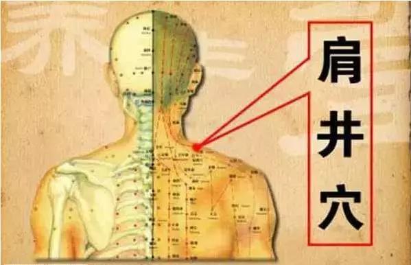 頭痛、背痛、肩痛…身體8個止痛開關,哪痛按哪!(動圖演示)