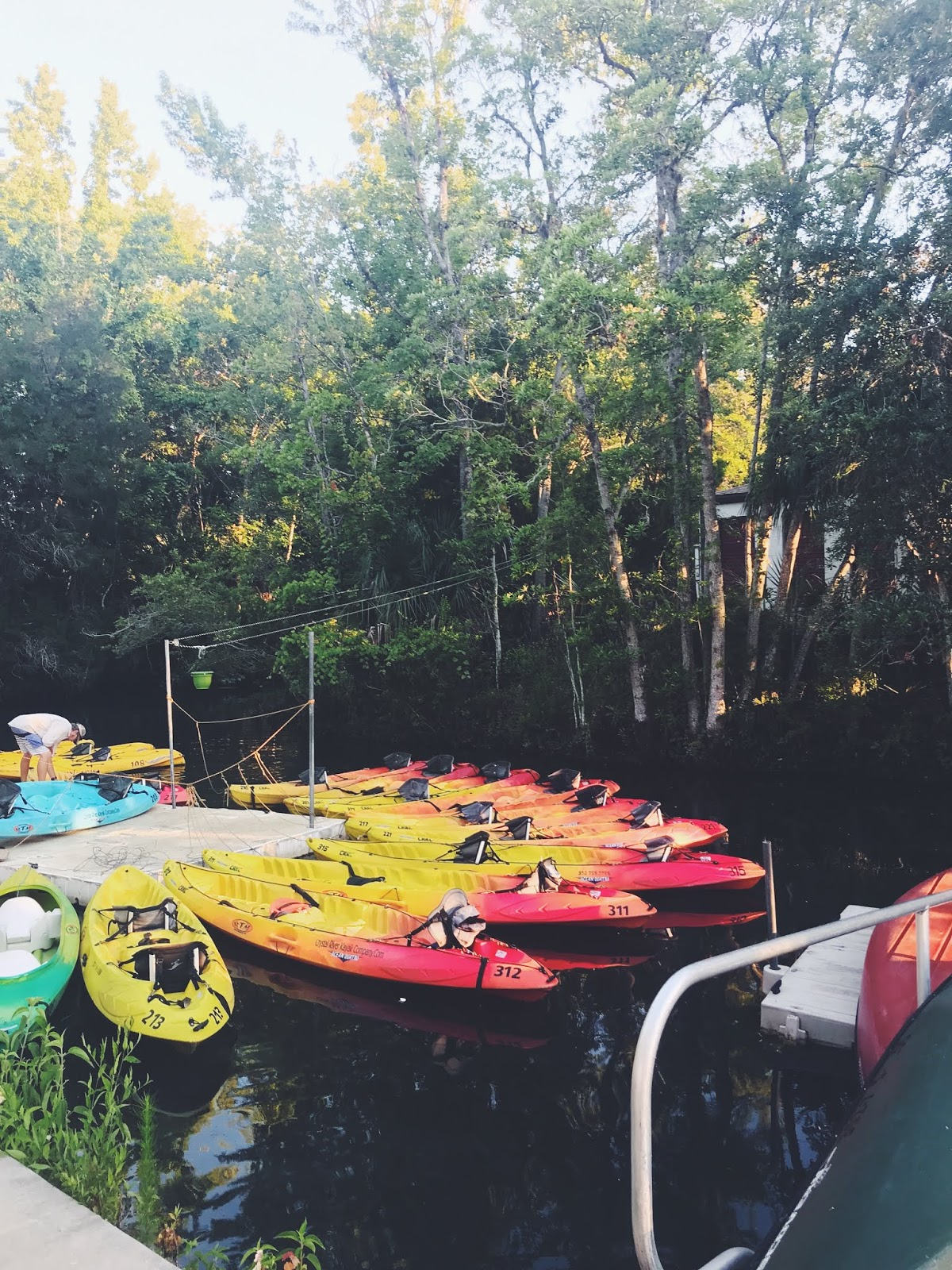 crystal river manatee kayak 3