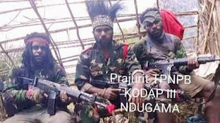 Tidak Disangka, Ini Pernyataan Egianus Kogeya Usai KKB Serang TNI, Sebut TNI Bohong!