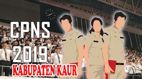 FORMASI CPNSD 2019 KABUPATEN KAUR