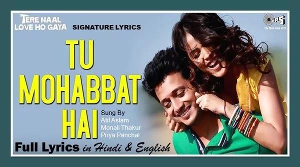 Tu Mohabbat Hai Lyrics - ATIF ASLAM - Tere Naal Love Ho Gaya