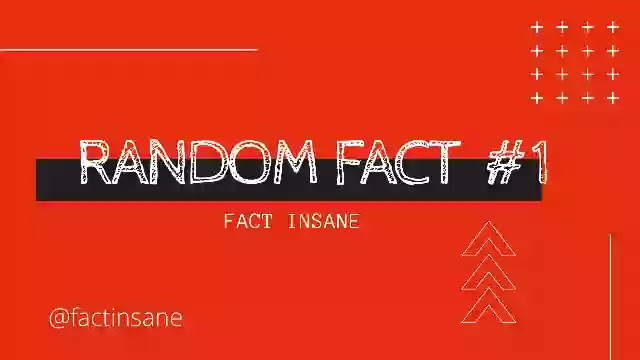 Random facts #1   Most Amazing Facts