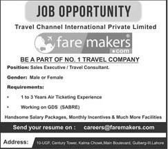 sales executive jobs ~ Professional PK