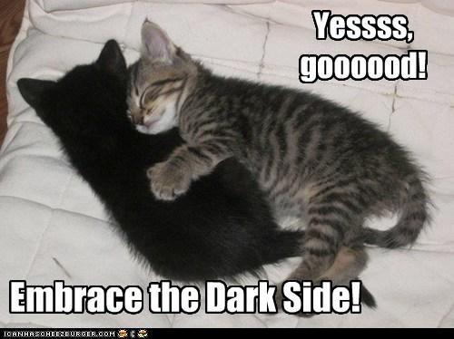 lolcat-embrace-dark-side.jpg