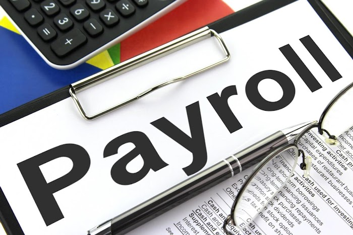 How to Prevent Payroll Frauds Using Online Payroll Software?