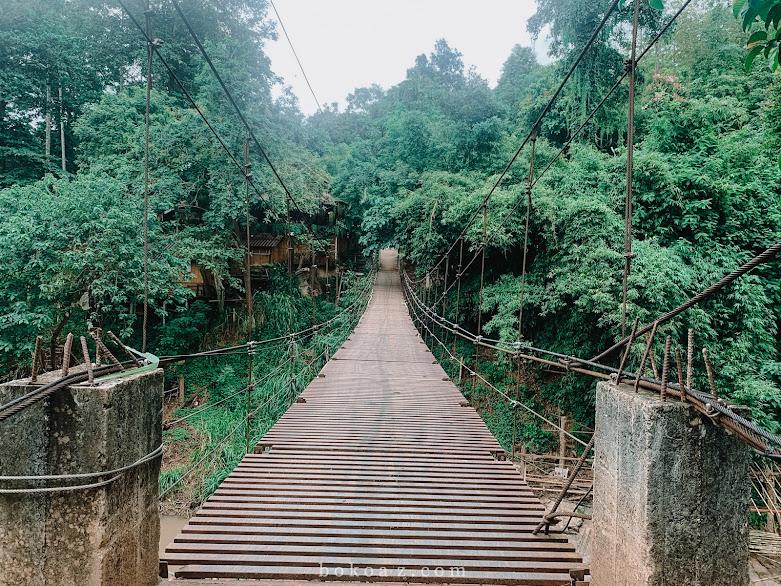 รีวิวที่พักมีช้างมาปลุก Chai lai orchid เชียงใหม่