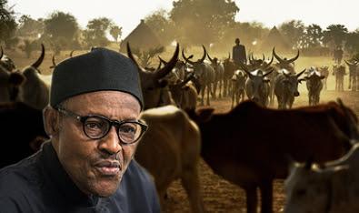 can vote no confidence buhari herdsmen