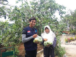 Program Bina Desa Mandiri Solopeduli Panen Jambu Merah dan Kristal