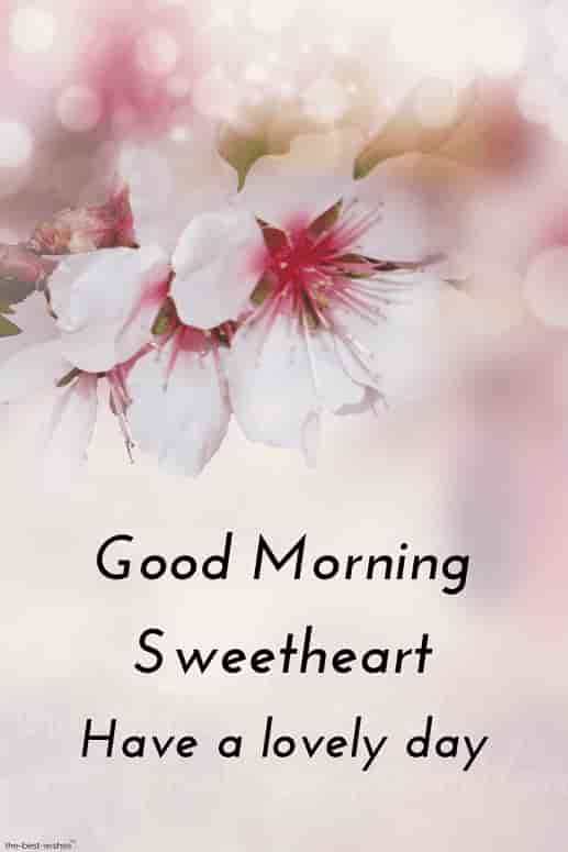 good morning hd image for sweetheart