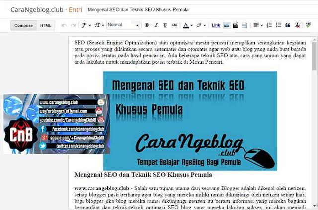 Editor Entri Blogger.com dan Fungsinya
