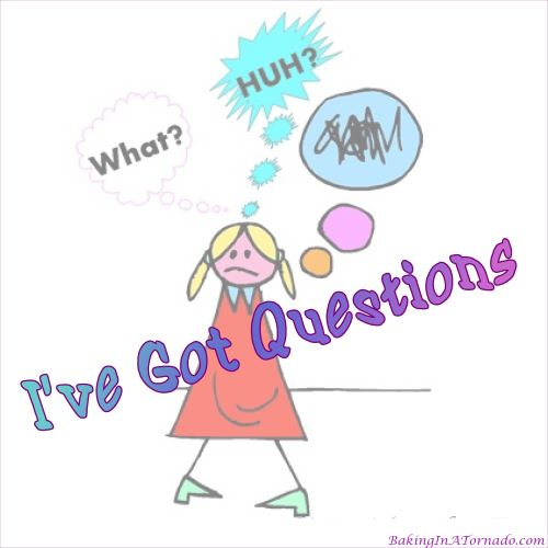 I've Got Questions | graphic designed by, featured on, and property of www.BakingInATornado