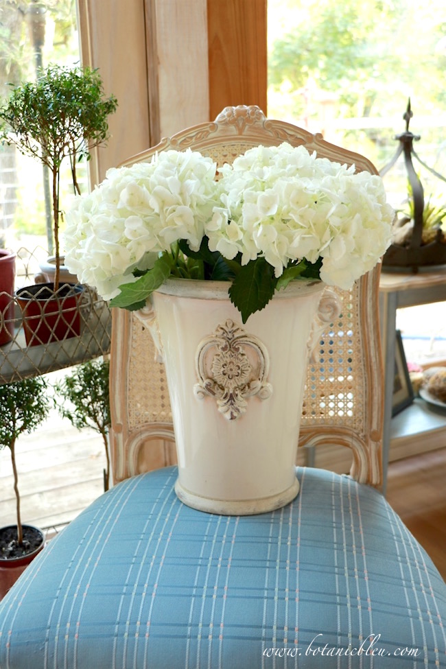 french-style-chair-holds-french-urn-with-white-hydrangeas
