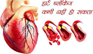 heart blockage kabhi nahi ho sakta hindi, हार्ट ब्लॉकेज कभी नही हो सकता hindi, Heart blockage can never happen in hindi, heart blockage ke liye kya khana chahiye in hindi, heart blockage ke lakshan hindi mai, heart blockage symptoms in hindi, heart blockage ke karan in hindi, heart blockage ke liye upyogi in hindi, heart blockage treatment in homeopathy in hindi, heart blockage meaning in hindi,  heart blockage kyon hota hai in hindi,  heart blockage kya hai in hindi,  heart blockage ki prasani in hindi,  heart blockage ki photo,  heart blockage image,  heart blockage jpeg,  heart blockage jpg,  heart blockage pdf in hindi,  heart blockage artcile in hindi, Main reasons for heart and why in hindi, Heart blockage signs in hindi, Home treatment and prevention of heart blockage in hindi, heart blockage ke liye yoga in hindi, Pomegranate for Heart blockage in hindi, Arjun tree bark for heart blockage in hindi, Cinnamon for heart blockage in hindi, Red chillies for heart blockage in hindi, Linseed for heart blockage in hindi, Garlic for heart blockage in hindi, Turmeric for heart blockage in hindi, Lemon for heart blockage in hindi, Grapes for heart blockage in hindi, Ginger for heart blockage in hindi, Tulsi for heart blockage in hindi, Gourd for heart blockage in hindi, Cardamom for heart blockage in hindi, Prevention of heart blockage from peepal leaves in hindi, Heart blockage prevention in hindi,  क्यों सक्षमबनो इन हिन्दी में, क्यों सक्षमबनो अच्छा लगता है इन हिन्दी में?, कैसे सक्षमबनो इन हिन्दी में? सक्षमबनो ब्रांड से कैसे संपर्क करें इन हिन्दी में, सक्षमबनो हिन्दी में, सक्षमबनो इन हिन्दी में, सब सक्षमबनो हिन्दी में,अपने को सक्षमबनो हिन्दीं में, सक्षमबनो कर्तव्य हिन्दी में, सक्षमबनो भारत हिन्दी में, सक्षमबनो देश के लिए हिन्दी में,खुद सक्षमबनो हिन्दी में, पहले खुद सक्षमबनो हिन्दी में, एक कदम सक्षमबनो के ओर हिन्दी में, आज से ही सक्षमबनो हिन्दी हिन्दी में,सक्षमबनो के उपाय हिन्दी में, अपनों को भी सक्षमबनो का रास्ता दिखाओं हिन्दी में, सक्षमबनो का ज्ञान पाप्त करों हिन्दी 