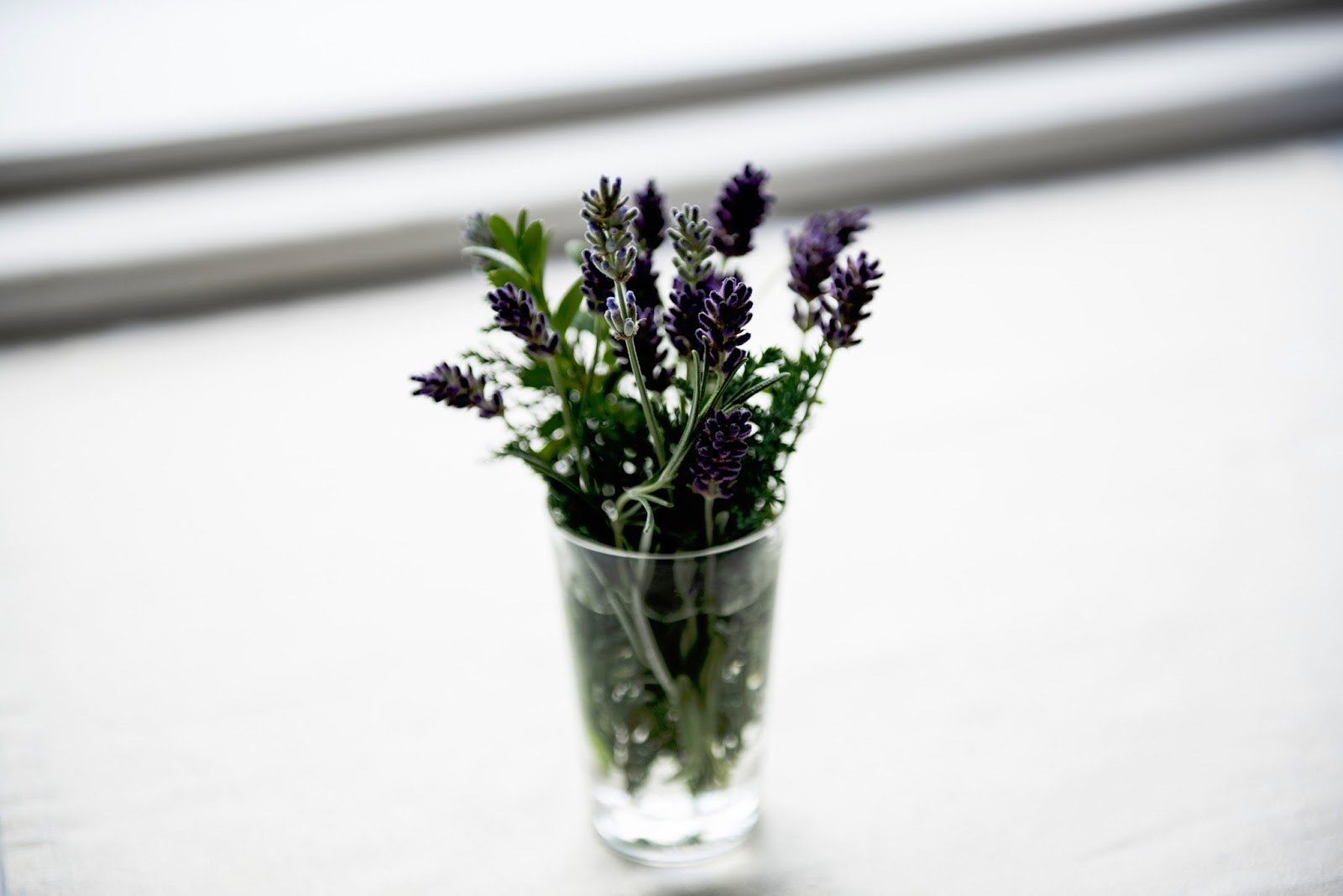 freshen up your living space for summer - Collection of lavender stems in a small glass