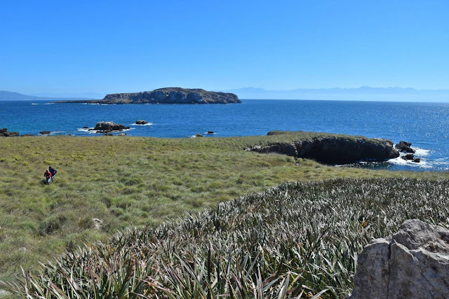 Sendero interpretativo en la Isla Larga.