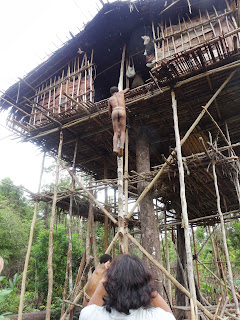 Festival Baliem, Chez Koroway et Mentawai 2019