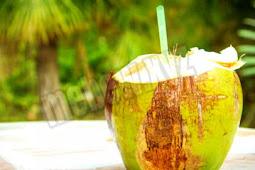 6 manfaat air kelapa untuk ibu menyusui