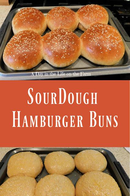 Sourdough Hamburger Buns pin