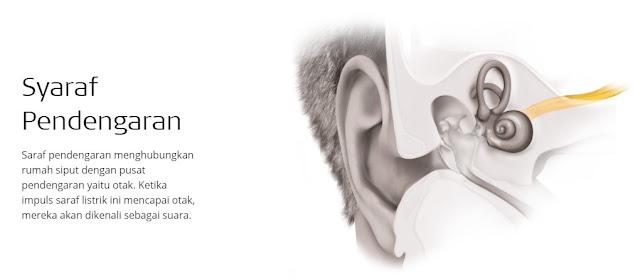 syarat pendengaran