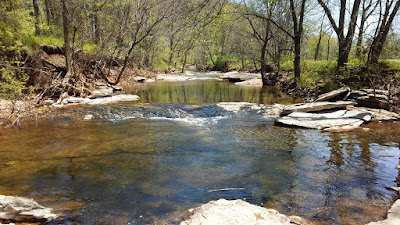 Ozark Mountain Spring