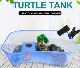 aquarium-kura-kura-berkualitas.jpg