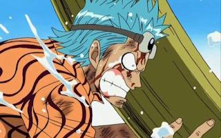 Fakta Franky One Piece