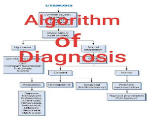 كتابAlgorithms of diagnosis and treatment